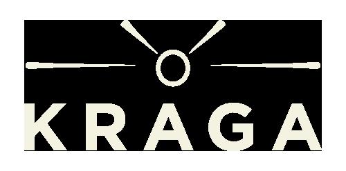 Kraga 3D printed RC planes